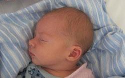 Det Private Barselshotel. Nyfødt der ligger svøbt i sindyne. Sundhedsstyrelsen anbefaler ikke hovedpuder til nyfødte
