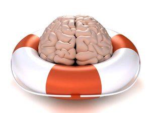 Hjernen reddes af nødvendige fedtstoffer