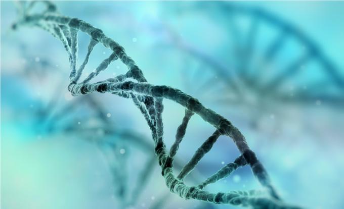 DNA fra menneske