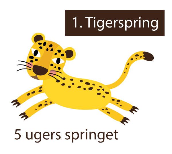 Tigerspring 1. 5 ugers springet