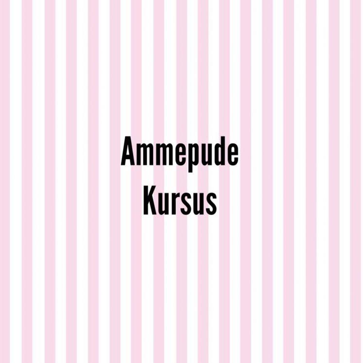 Ammepude kursus – Få det bedste ud af din Doomoo ammepude