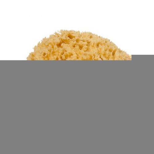 Natursvamp i bomuldspose fra Cocoon